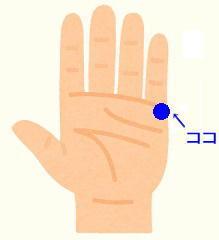 body_hand_tenohira2.jpg