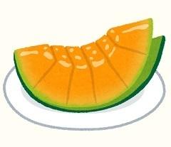fruit_melon_hitokuchi_orange.jpg
