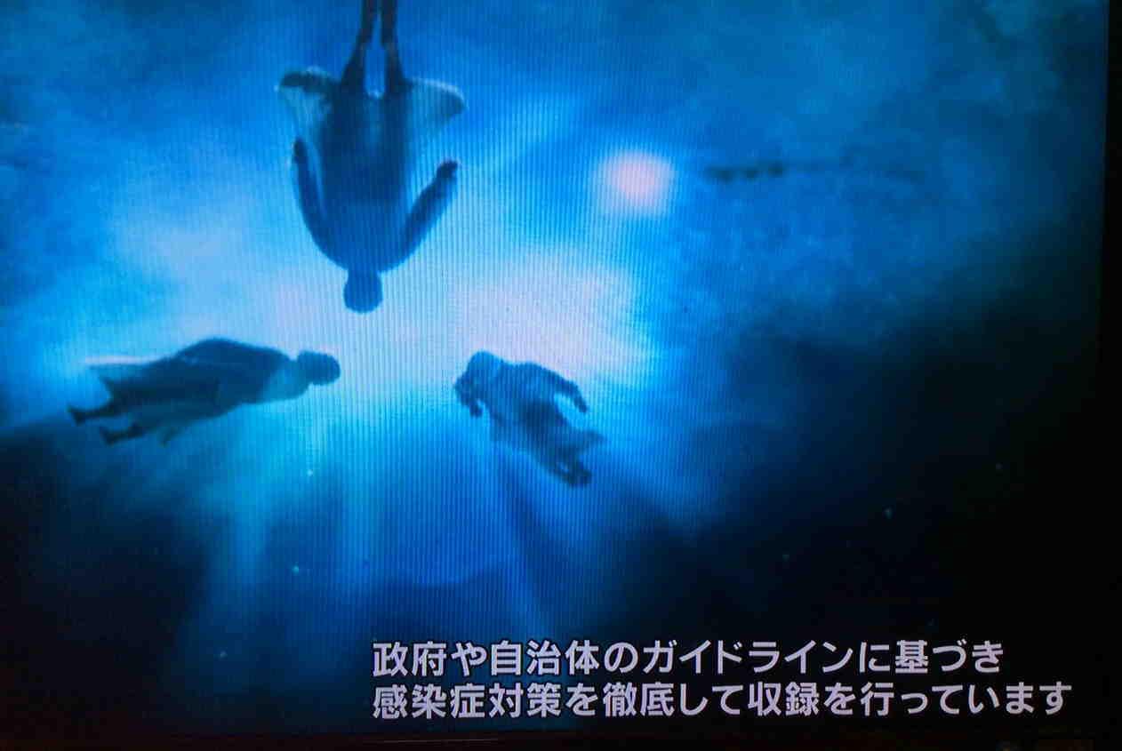 tv-capt2108.jpg